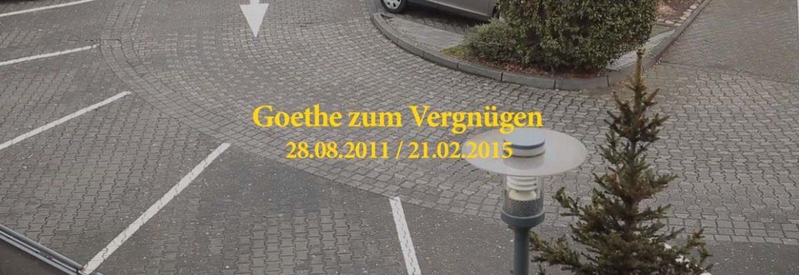 Goethe zum Vergnügen - Anna Dot