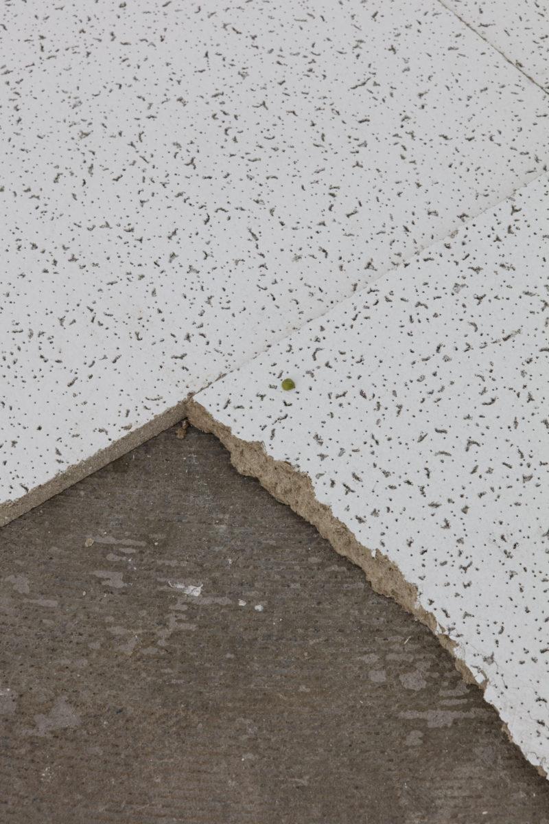 """Una muntanya a dins de casa (Herald St.)"". Foto: Alexander Christie"
